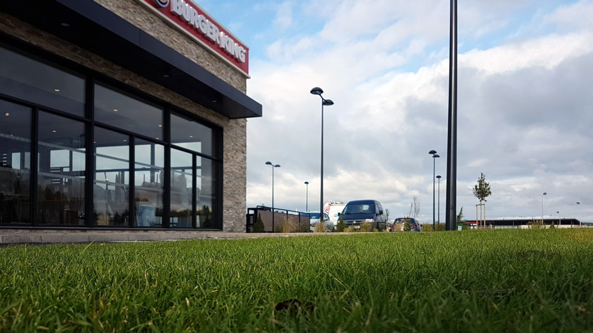Gazon en plaques pour le Burger King de Vesoul (70)